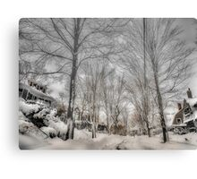 After Blizzard Nemo, Brookline, MA Canvas Print