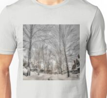 After Blizzard Nemo, Brookline, MA Unisex T-Shirt
