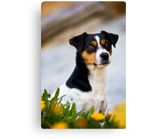 Foxy Dog *PROCEEDS TO CHARITY* Canvas Print