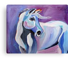 Someone Is Gonna Love Me - Horse Art by Valentina Miletic Canvas Print