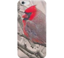 Nature's best iPhone Case/Skin