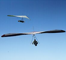 Hang Gliders, Newcastle Beach, Australia by wanderingtall