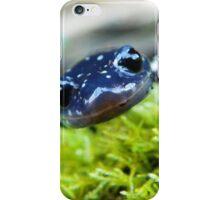 lizard iPhone Case/Skin