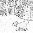 Bath likes dogs by Matt Mawson