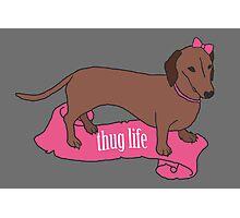 Thug Life - Vaguely Menacing Puppies with Bows #2 Photographic Print