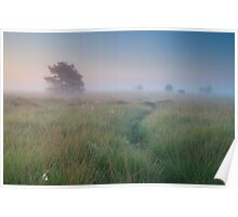 Path in the mist Poster