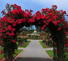 Arch of Roses by Lloyd Mouat