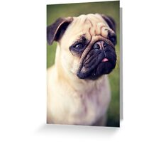 Cute Pug *PROCEEDS TO CHARITY* Greeting Card