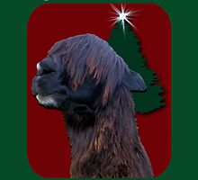 Hippy Alpaca Christmas Card by Shonam