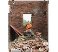 Rubble Buddha iPad Case/Skin