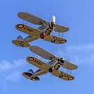 A pair of Gloster Gladiators by Colin Smedley