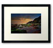 Hidden Nature  Framed Print