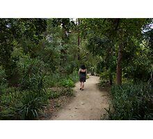 Forest walks Photographic Print