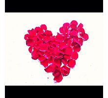 Love and rose petals Photographic Print