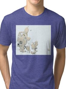 Danish blue cheese Tri-blend T-Shirt