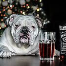 Todays bulldog is brought to you by Jack  Daniels wiskey  by ARIANA1985