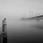 Wood, Water, Steel and Fog by Dennis Maida