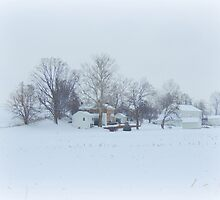 Our White World! by TrendleEllwood