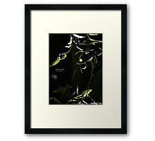 PANTONE - VINE  Framed Print