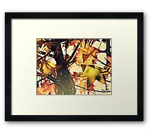 PANTONE #457 Framed Print