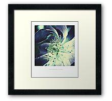 PANTONE #5285 Framed Print