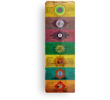The System of Chakras Metal Print