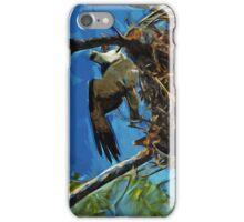 Osprey St George Island Florida Abstract Impressionism iPhone Case/Skin
