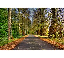 Manor Lane  Photographic Print