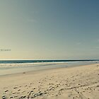 SAND & SEA #039 by Laura E  Shafer