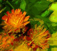 Orange Hawkweed Blossoms Abstract Impressionism by pjwuebker