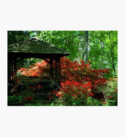 Garden Gazebo Photographic Print
