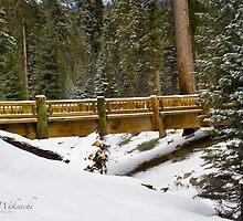 Bridge at Wuksachi by KurtKeller