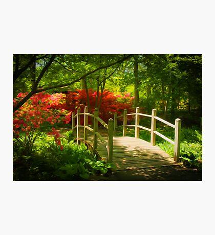 Garden Bridge Photographic Print