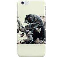 glass and grizzly the revenant movie iPhone Case/Skin