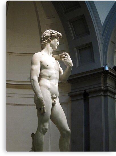 David by Michelangelo by buttonpresser