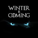 Winter is Coming by MarkSeb
