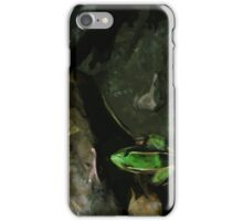 Northern Leopard Frog on Rocks Abstract Impressionism iPhone Case/Skin