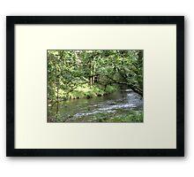 Woodland streams Framed Print