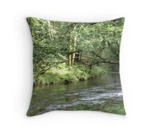 Woodland streams Throw Pillow