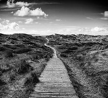 BOARDWALK by rawtalent79