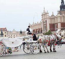 Horse Drawn Carriage by Andrea  Muzzini