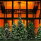Christmas NYC - Park Ave. by VDLOZIMAGES