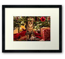 Cisco Loves Christmas Framed Print