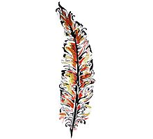 Fiery Feather Photographic Print