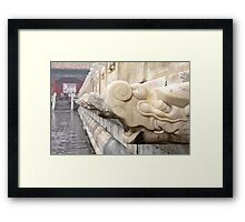 Dragon head's Framed Print