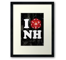 I D20 New Hampshire Framed Print