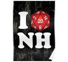 I D20 New Hampshire Poster