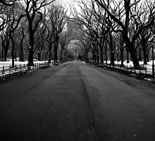 Deserted Central Park by Ryan Mingin
