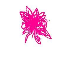 Pretty Pink Flower Photographic Print