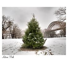 Astoria Park by ponycargirl